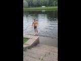 Искупался в озере на Крестовском острове!