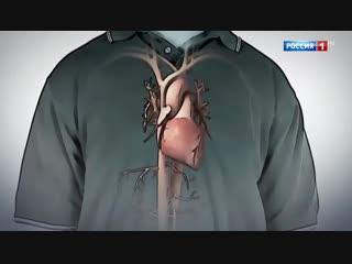 10 советов доктора Беленкова: что лучше для сердца - худеть или не худеть