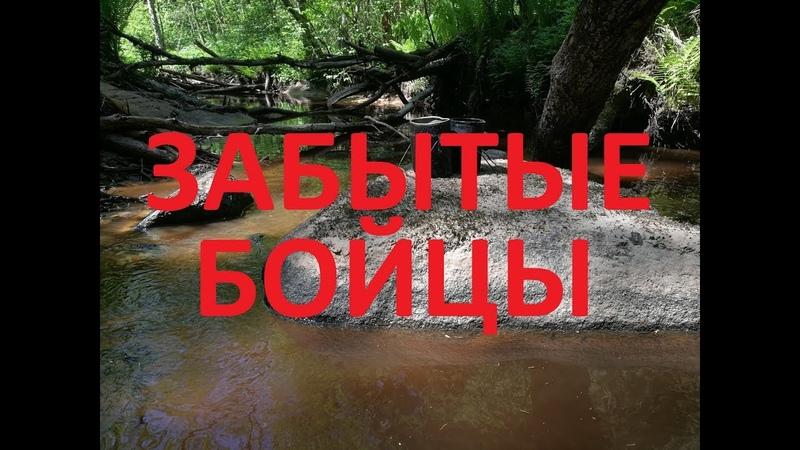 70 Волховские будни Раскопки по войне История в один ДЕНЬ