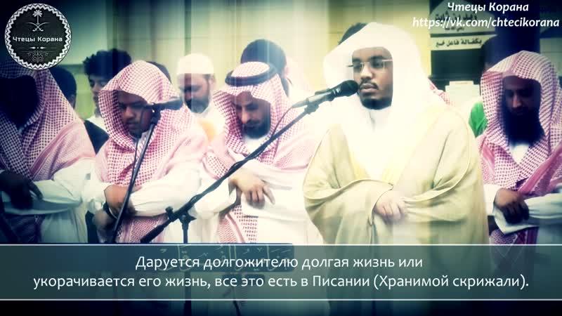 Ясир ад Даусари Сура 35 аль Фатыр Творец аяты 11 26