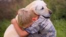Человек и животные. Истории удивительной любви. 2