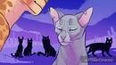 Коты воители- °Круги на воде°