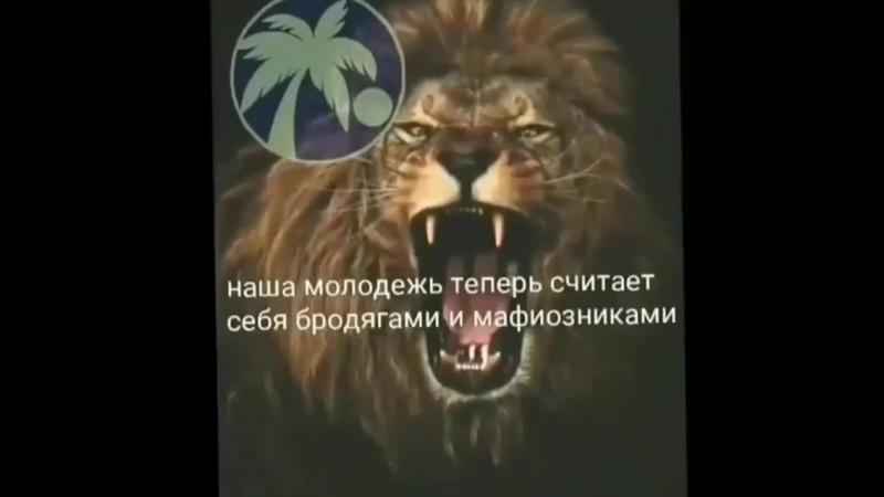 Muzik_chechnya20180901161426066.mp4
