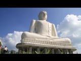 Шри-Ланка. Джунгли и руины.