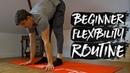 15 Minute Beginner Flexibility Routine FOLLOW ALONG