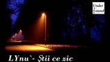 Colaj Muzica Lynu Si Adi Peste 16