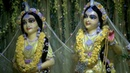 Special blessing today Radha Madhava in Their yellow Vasant Panchami dress