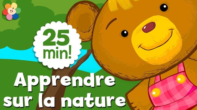 Apprendre sur la nature   Dessins animés éducatifs pour les enfants   BabyFirst