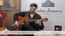 Vicente Amigo's Lester Devoe 2003 flamenco guitar for sale played by Jerónimo Maya