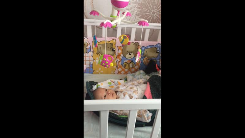 Данэлия 2 месяца