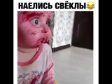 Это надо видеть!))))