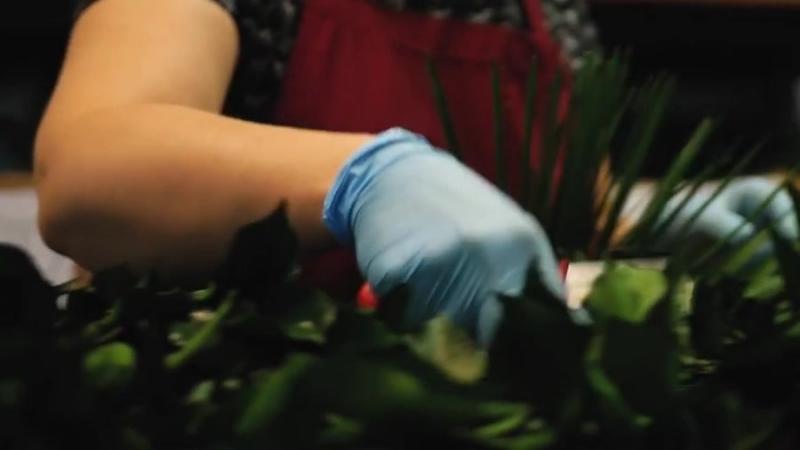 Фитостены Озеленение Стена из мха Стабилизированный мох Кочки Ягель