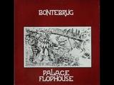 Palace Flophouse Bontebrug ( 1979, Dutch Folk )