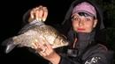 Ловля карася на удочку. Вечерний клев и ночная рыбалка в Беларуси Абрамы 2018
