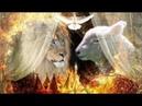 Gottes Herrlichkeit ➤ Die Offenbarung des Messias