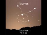 Знаки зодиака Taurus