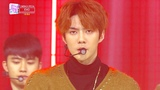 EXO - Tempo SBS Inkigayo Ep 981