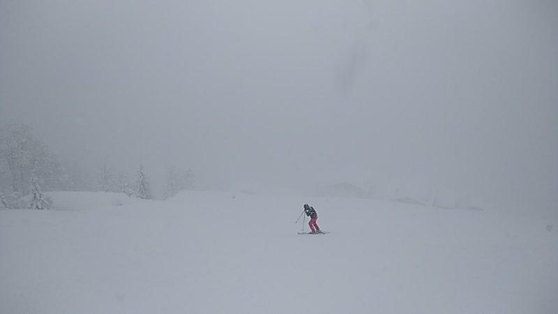 снег да снег кругом
