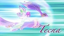 Winx Club Season 7 Tecna Tynix Spells English