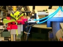 Despre un robot pentru altoirea plantelor legumicole În grădina Danei pe TVR1