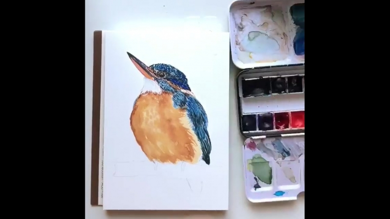You can notice that I used two different palettes for this Kingfisher. I started with but I don't have indigo color in my set s