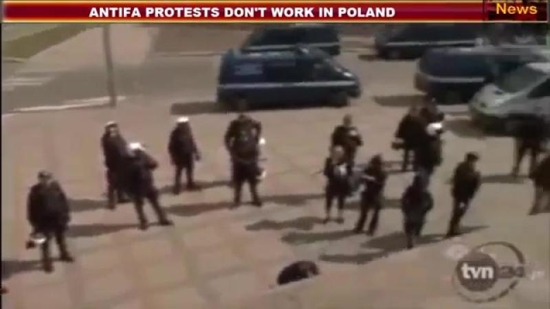Ils sont tellement cons qu'ils vont jusqu'à manifester en Pologne mdr