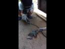 Внук Денис учится сварке металлов