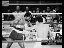 Wilfredo Gomez KOs Carlos Mendoza - September 28, 1979 Retains Title
