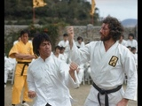 Enter the Dragon _ Bruce Lee vs Bob Wall _ Fight Scene HD