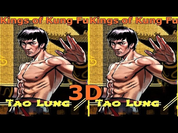 3D VR video Kings of Kung Fu 3D SBS VR box google cardboard