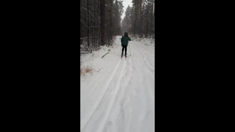 прогулка на лыжах)