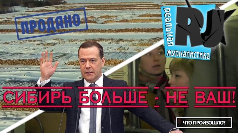 ♐Воры сорвались с цепи. Хроники АПОФИГЕЯ в России. Что произошло?♐