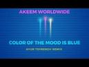 Akeem Worldwide - Color of the mood is blue (Ayur Tsyrenov remix)