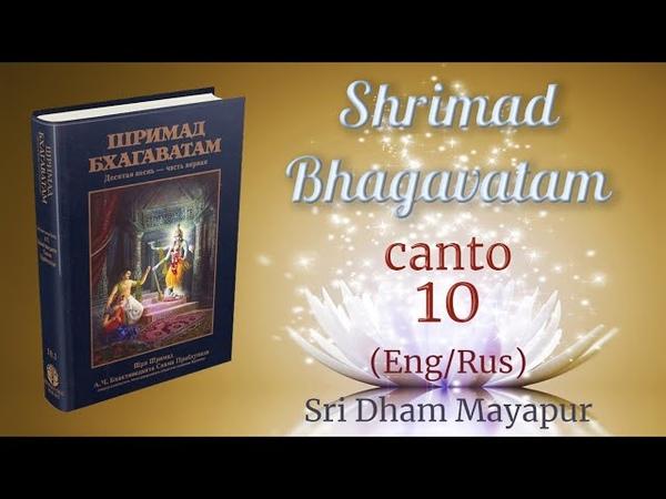 H.G. Acintya Caitanya prabhu S.B. 10.1.1 (EngRus) (4K)