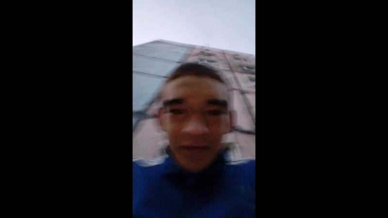 Неколай Шуста Live
