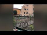 Италия . Пиза.