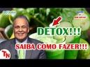 DETOX SAIBA COMO FAZER E As Causas Da Intoxicação Lair Ribeiro