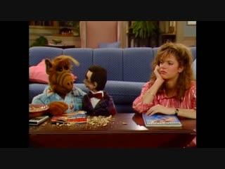 Alf Quote Season 2 Episode 23_Орехи