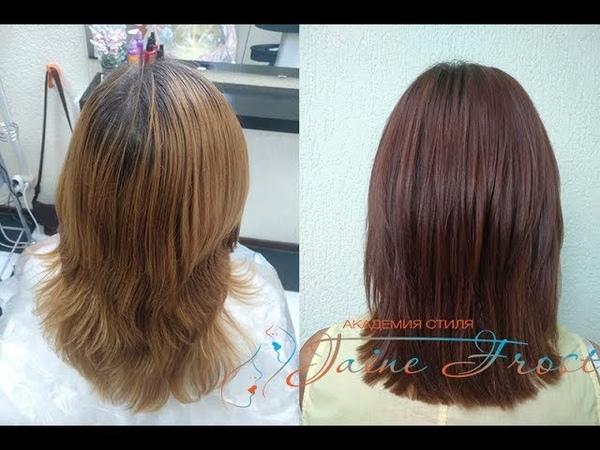Формула окрашивания волос |Тон палисандр
