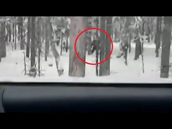 Снежный человек выскочил из леса и спровоцировал аварию в Подмосковье (2018)