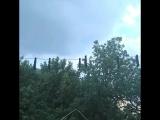 14.07.2018. Крым, Новый Свет, можжевеловая роща. Какой аромат