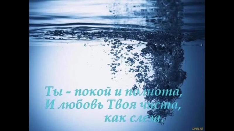 Изобильная Виноградная Лоза.avi.wmv