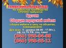 16 ноября 19 20 Работа в Самаре Телевизионная Биржа Труда