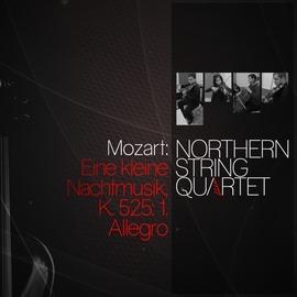 Wolfgang Amadeus Mozart альбом Mozart: Eine kleine nachtmusik, K. 525: 1. Allegro