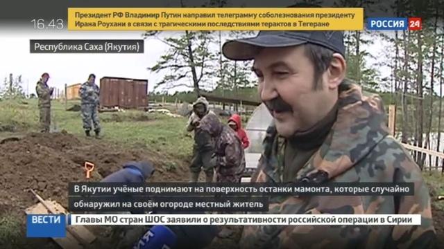 Новости на Россия 24 • Житель Якутии откопал на картофельном поле редкого мамонта