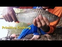 Primitive Cooking - Find and Roasted big Fish on a Rock - Real Fish Videos