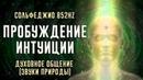 Сольфеджио 852Hz ✦ Пробуждение интуиции ✦ Духовное общение Звуки природы
