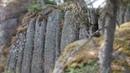 Каменные чертоги пришельцев новая трактовка загадки Стоунхенджа