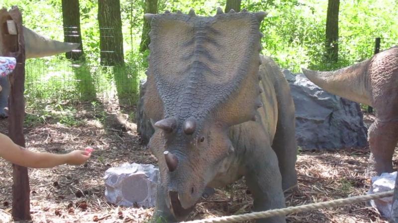 Динозаврики, может вы у нас, а не в Африке