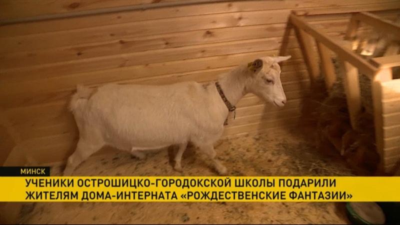 Ученики Острошицко Городокской школы подарили дому интернату мёд картофель и двух козочек
